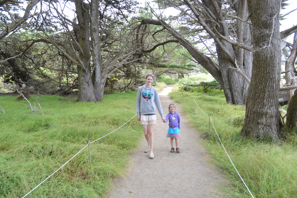 Carmel California Point Lobos State Reserve hike with kids - Mommy Scene