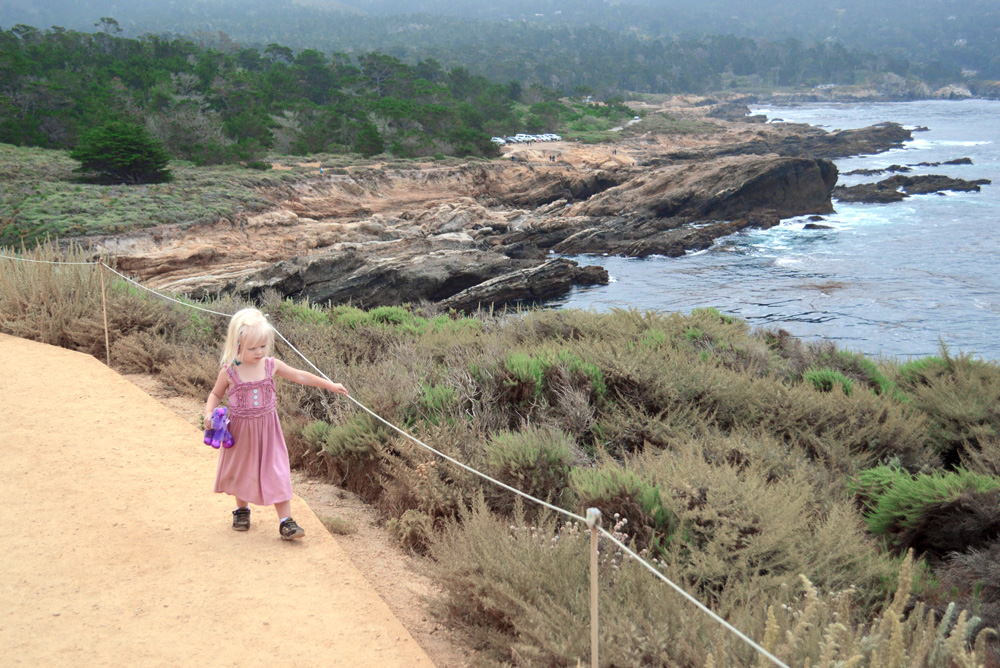 Carmel California Point Lobos State Reserve family vacation - Mommy Scene