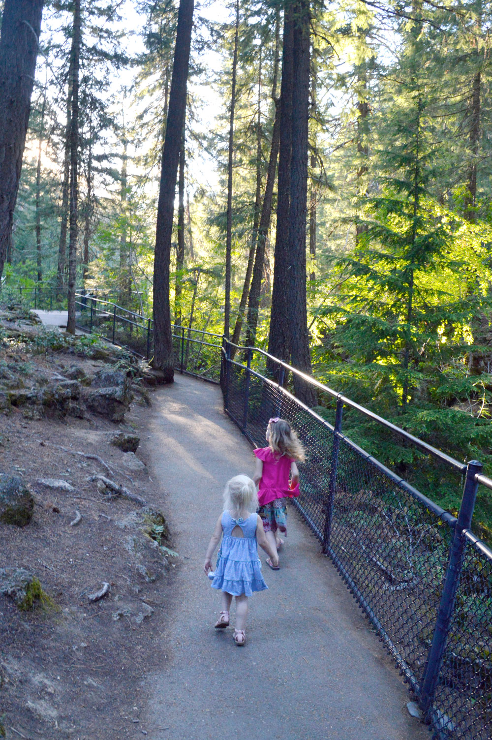 Rogue Gorge family hike in Oregon - Mommy Scene